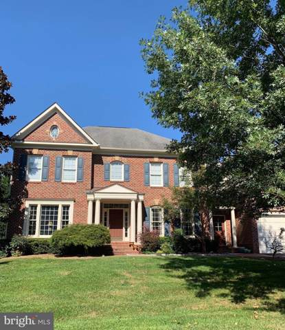 43604 Emerald Dunes Place, LEESBURG, VA 20176 (#VALO396044) :: Pearson Smith Realty