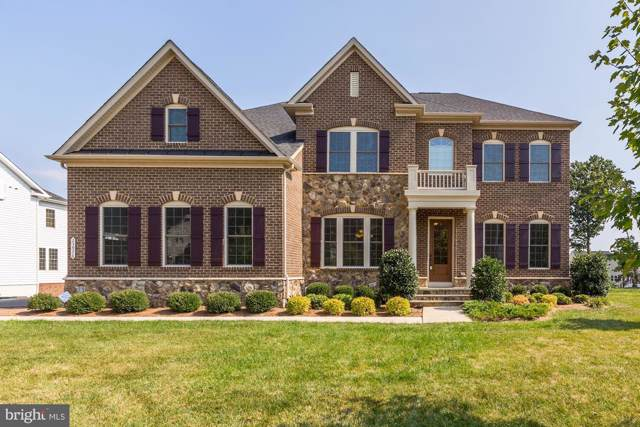 23976 Lavender Meadow Place, ASHBURN, VA 20148 (#VALO396104) :: AJ Team Realty