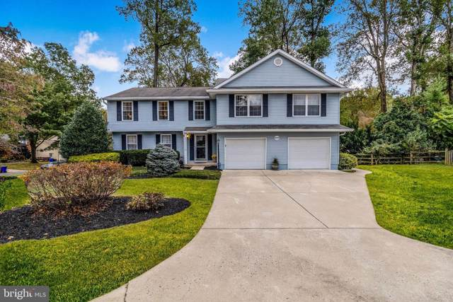 9559 Morning Mews, COLUMBIA, MD 21046 (#MDHW271136) :: Blue Key Real Estate Sales Team