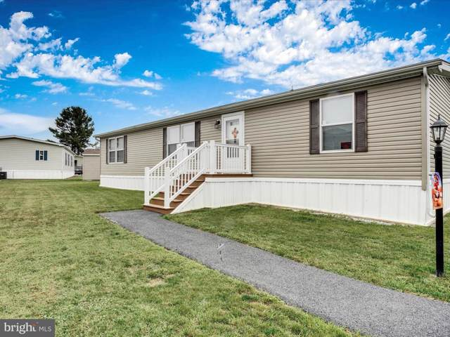 15 Amber Circle, NEW HOLLAND, PA 17557 (#PALA141328) :: The Joy Daniels Real Estate Group