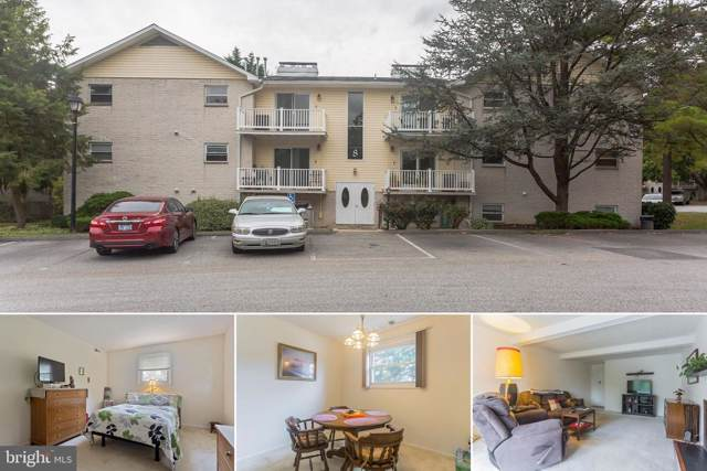 8 Warren Lodge Court 2-B, COCKEYSVILLE, MD 21030 (#MDBC474414) :: AJ Team Realty