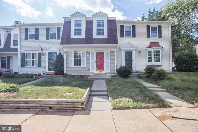 28 Dulany Court, STERLING, VA 20165 (#VALO396300) :: The Greg Wells Team