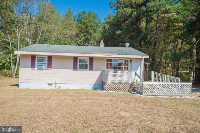 9969 Wallertown Road, MARDELA SPRINGS, MD 21837 (#MDWC105404) :: AJ Team Realty