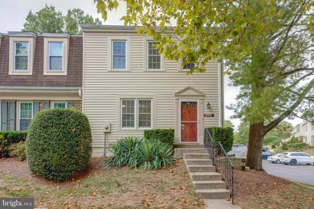6344 Pine View Court 65C, BURKE, VA 22015 (#VAFX1093294) :: Cristina Dougherty & Associates