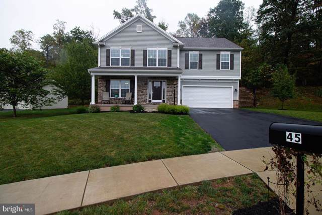 45 Pin Oak Lane, ETTERS, PA 17319 (#PAYK126334) :: The Joy Daniels Real Estate Group