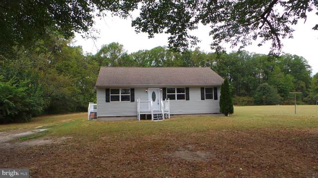 4228 E New Market Hurlock Road, HURLOCK, MD 21643 (#MDDO124368) :: AJ Team Realty