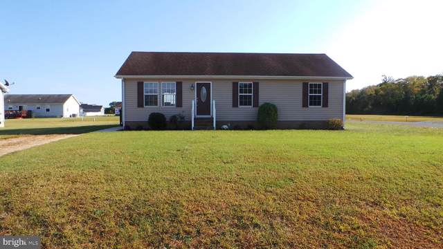 29971 Greenspring Drive, PRINCESS ANNE, MD 21853 (#MDSO102750) :: Bruce & Tanya and Associates