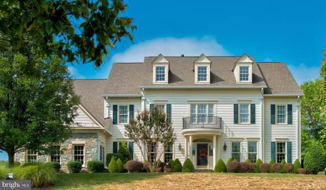 40871 Spectacular Bid Place, LEESBURG, VA 20176 (#VALO396386) :: Blue Key Real Estate Sales Team