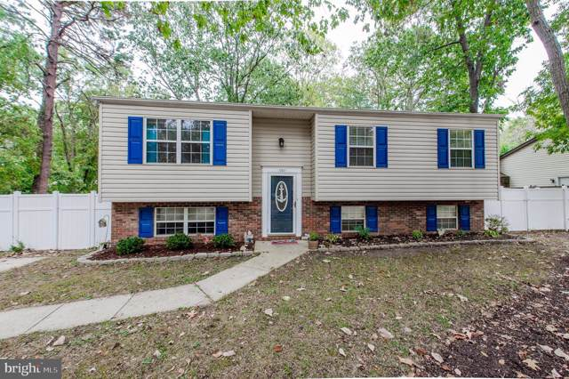 241 Kentucky Avenue, PASADENA, MD 21122 (#MDAA415444) :: ExecuHome Realty