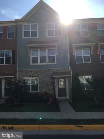 25492 Cancello Terrace, CHANTILLY, VA 20152 (#VALO396456) :: Blue Key Real Estate Sales Team