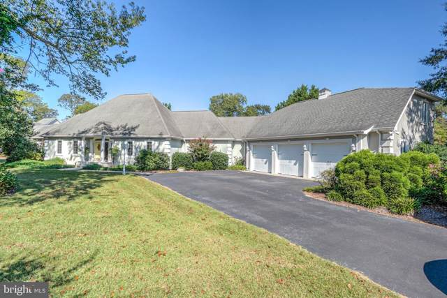120 Creekside Drive, DAGSBORO, DE 19939 (#DESU149380) :: The Allison Stine Team