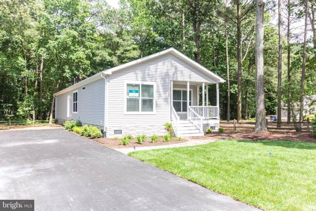 26463 Cottontail Cove #2968, LONG NECK, DE 19966 (#DESU149428) :: Brandon Brittingham's Team