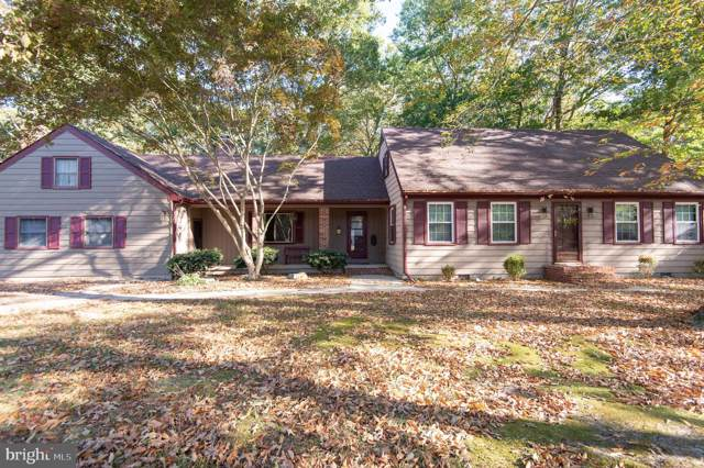 3318 Landrum Drive, EAST NEW MARKET, MD 21631 (#MDDO124374) :: Bob Lucido Team of Keller Williams Integrity