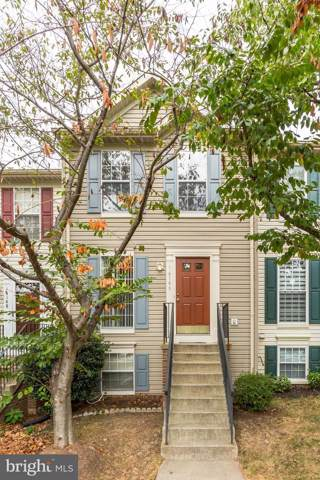 14146 Asher View, CENTREVILLE, VA 20121 (#VAFX1093758) :: ExecuHome Realty
