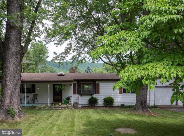 121 Apache Trail, WINCHESTER, VA 22602 (#VAFV153622) :: Network Realty Group