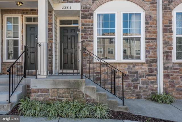 42214 Water Iris Terrace, ALDIE, VA 20105 (#VALO396570) :: Pearson Smith Realty