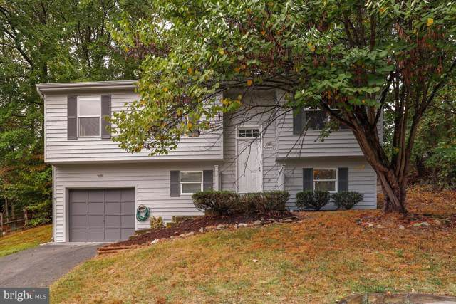 6860 Whistling Swan Way, NEW MARKET, MD 21774 (#MDFR254634) :: The Maryland Group of Long & Foster