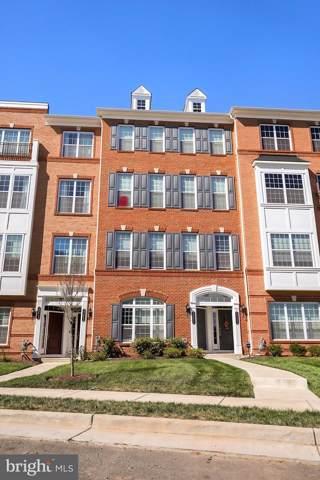 23656 Hopewell Manor Terrace, ASHBURN, VA 20148 (#VALO396620) :: Bob Lucido Team of Keller Williams Integrity