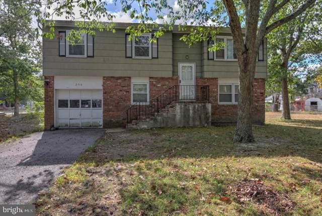 250 Point Pleasant Avenue, BAYVILLE, NJ 08721 (#NJOC391436) :: Bob Lucido Team of Keller Williams Integrity