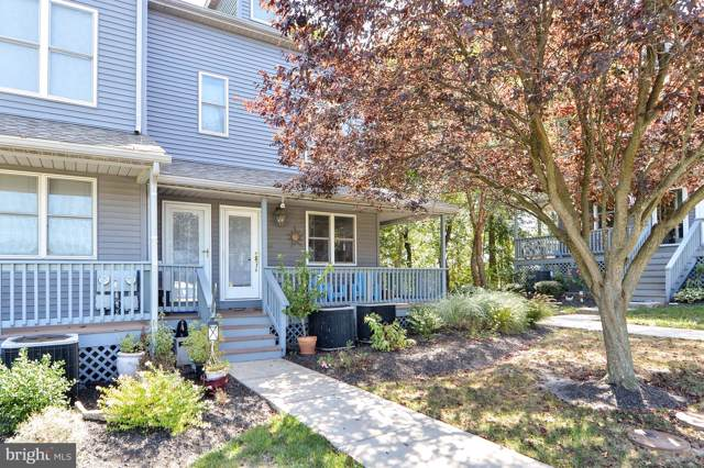 108 North East Isles Drive, NORTH EAST, MD 21901 (#MDCC166464) :: AJ Team Realty