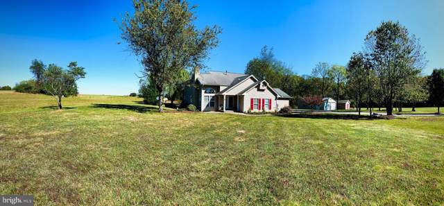 445 Cather Road, BERRYVILLE, VA 22611 (#VACL110854) :: LoCoMusings