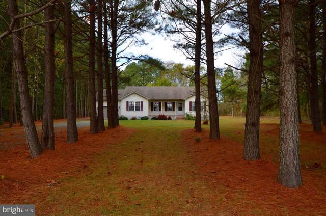 13360 Fitzbound Road, PRINCESS ANNE, MD 21853 (#MDSO102764) :: Atlantic Shores Realty