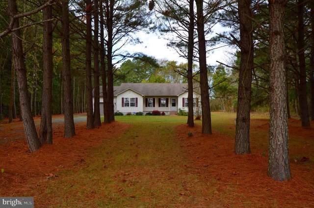 13360 Fitzbound Road, PRINCESS ANNE, MD 21853 (#MDSO102764) :: Keller Williams Pat Hiban Real Estate Group
