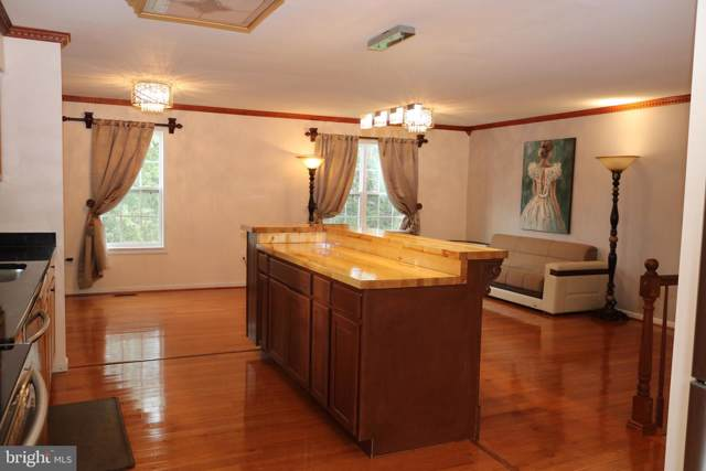 10209 Mckean Court, GREAT FALLS, VA 22066 (#VALO396722) :: Great Falls Great Homes