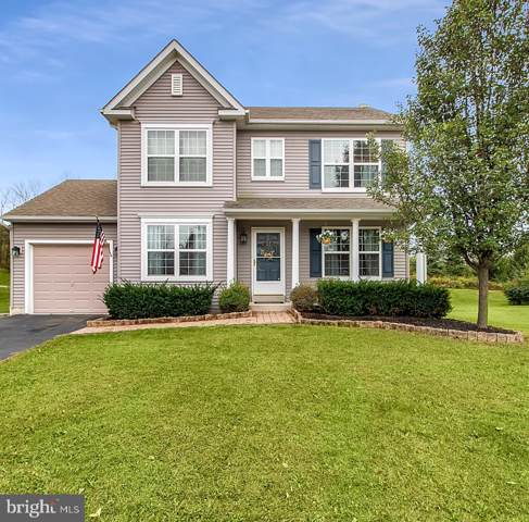 1205 Springhill Lane, POTTSTOWN, PA 19464 (#PAMC628092) :: The John Kriza Team