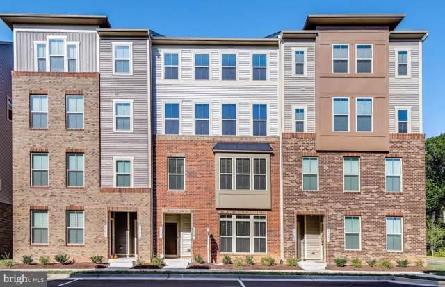 25291 Gray Poplar Terrace, ALDIE, VA 20105 (#VALO396782) :: LoCoMusings