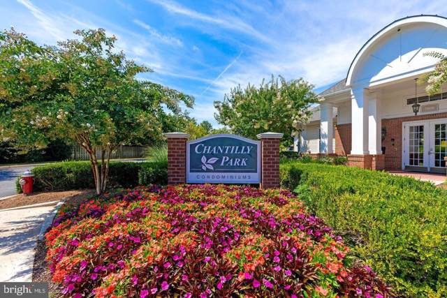 3850 Lightfoot Street #154, CHANTILLY, VA 20151 (#VAFX1094388) :: RE/MAX Cornerstone Realty