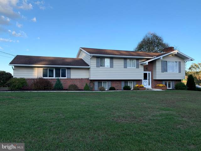 381 Archery Club Road, NEW RINGGOLD, PA 17960 (#PASK128236) :: The Joy Daniels Real Estate Group