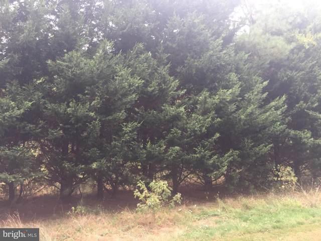 Lot 8 Olive Branch Drive, STEVENSVILLE, MD 21666 (#MDQA141828) :: LoCoMusings