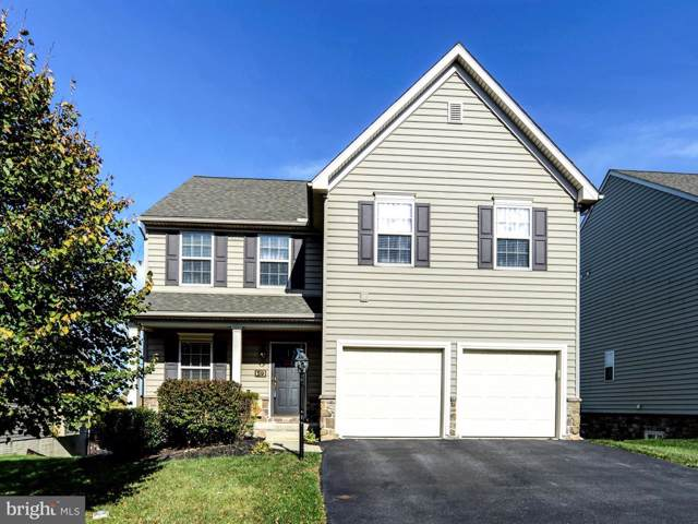 59 Dawkins Drive, EAST EARL, PA 17519 (#PALA141788) :: The Joy Daniels Real Estate Group