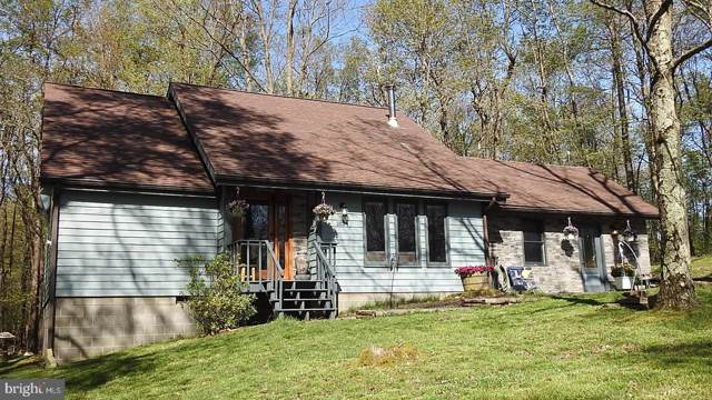 1824 E Alpine Drive, TERRA ALTA, WV 26764 (#WVPR103868) :: Charis Realty Group