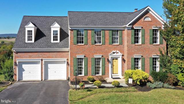110 Ivy Hill Drive, MIDDLETOWN, MD 21769 (#MDFR254922) :: Ultimate Selling Team
