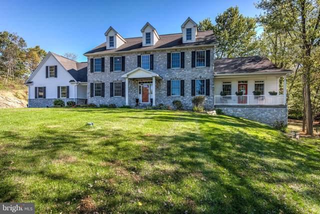 486 Rich Valley Road, CARLISLE, PA 17015 (#PACB118492) :: Flinchbaugh & Associates