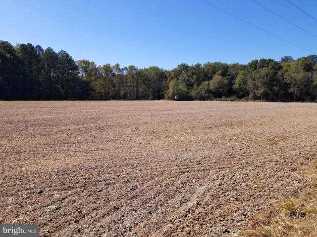 Messick Road, EAST NEW MARKET, MD 21631 (#MDDO124424) :: LoCoMusings