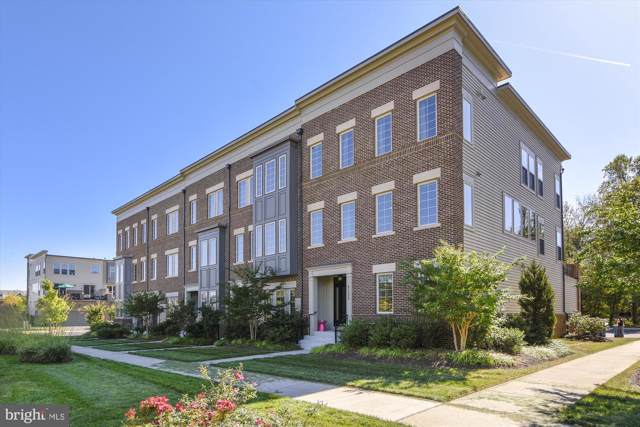 42298 Peregrine Terrace, BRAMBLETON, VA 20148 (#VALO396944) :: LoCoMusings