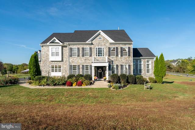 37293 Franklins Ford Place, PURCELLVILLE, VA 20132 (#VALO396956) :: Pearson Smith Realty