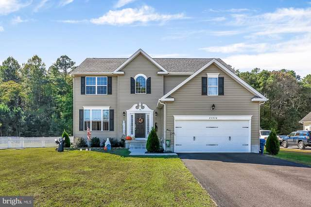 25948 Country Meadows Drive, MILLSBORO, DE 19966 (#DESU149828) :: The Allison Stine Team