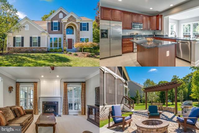 20687 Chauncey Lane, LEESBURG, VA 20175 (#VALO396994) :: The Licata Group/Keller Williams Realty
