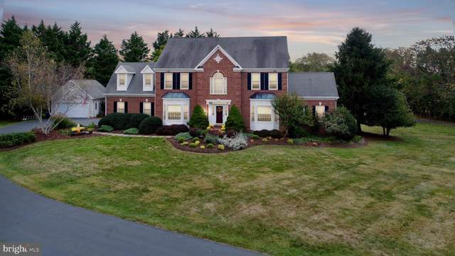 17792 Brookwood Way, PURCELLVILLE, VA 20132 (#VALO396998) :: AJ Team Realty
