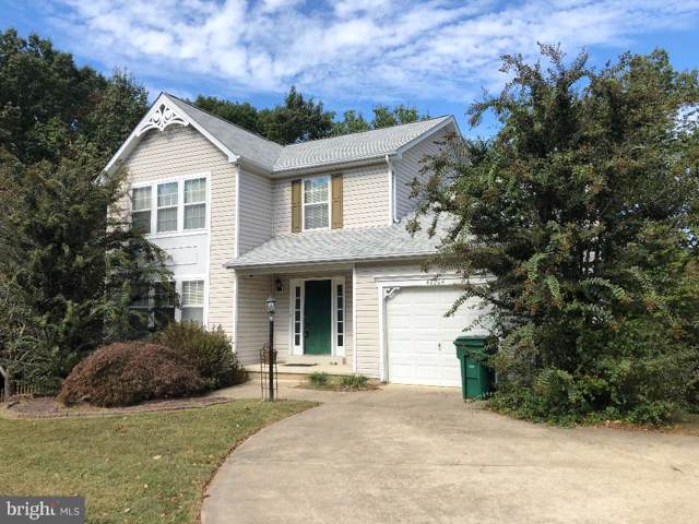 47204 Silver Slate Drive, LEXINGTON PARK, MD 20653 (#MDSM165584) :: Pearson Smith Realty