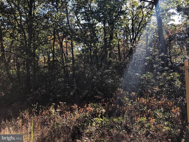 Lot 135 Bobcat Trail, WINCHESTER, VA 22602 (#VAFV153768) :: AJ Team Realty