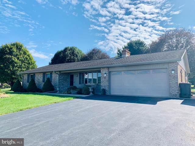 290 Daub Road, MYERSTOWN, PA 17067 (#PABK349432) :: Iron Valley Real Estate