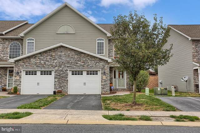 313 Briar Ridge Circle, ENOLA, PA 17025 (#PACB118548) :: The Heather Neidlinger Team With Berkshire Hathaway HomeServices Homesale Realty