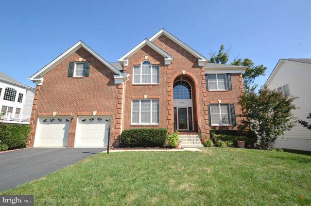 42342 Equality Street, CHANTILLY, VA 20152 (#VALO397040) :: Peter Knapp Realty Group