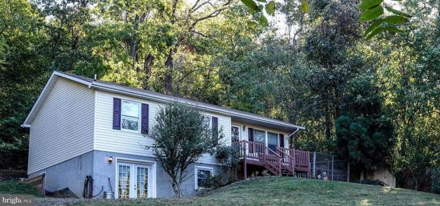 4151 Remount Road, FRONT ROYAL, VA 22630 (#VAWR138450) :: Bruce & Tanya and Associates