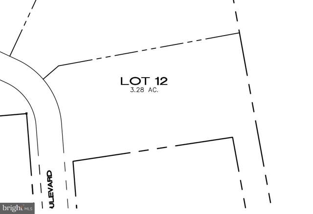 LOT 12 River Mist Boulevard, DUNCANNON, PA 17020 (#PAPY101480) :: The Jim Powers Team
